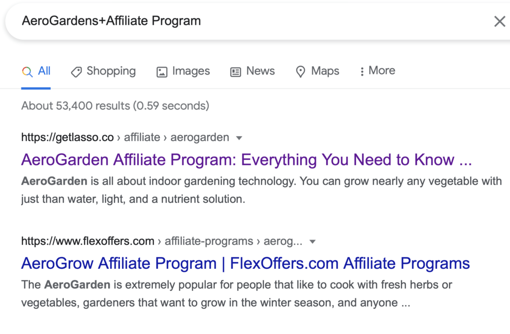 Google search for affiliate